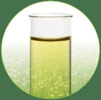 Top Kosmetik aus Colostrum. Naturkosmetik mit EGF Serum. Kosmetik mit EGF Wachstumsfaktoren