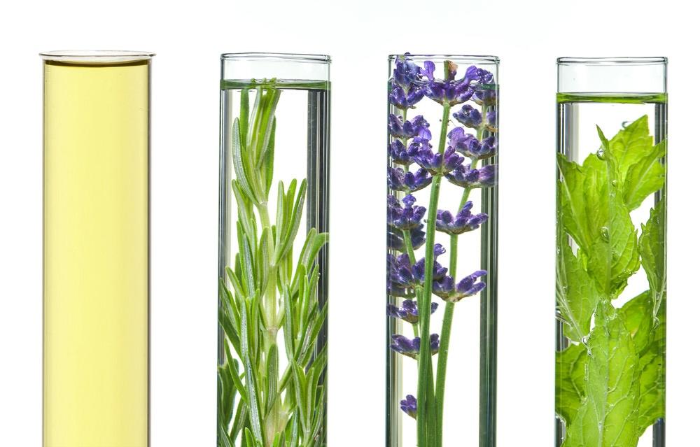 Inhaltsstoffe von kosmetischen Produkten