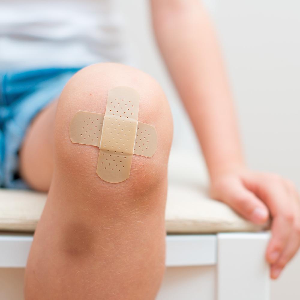 Regeneration und Wundheilung der Haut